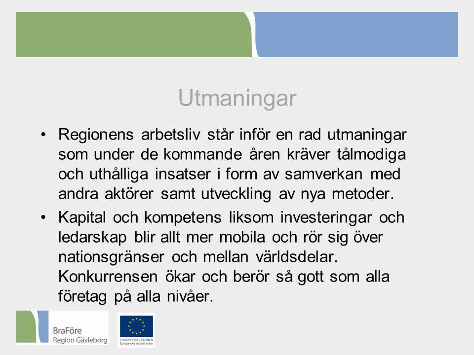 Utmaningar •Regionens arbetsliv står inför en rad utmaningar som under de kommande åren kräver tålmodiga och uthålliga insatser i form av samverkan med andra aktörer samt utveckling av nya metoder.