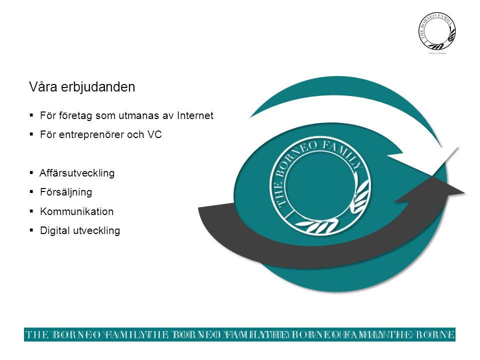 Våra erbjudanden  För företag som utmanas av Internet  För entreprenörer och VC  Affärsutveckling  Försäljning  Kommunikation  Digital utveckling