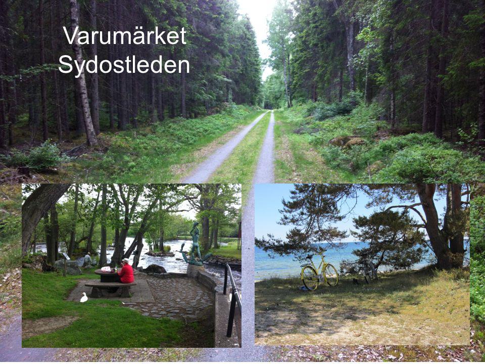 2014-06-29 Vision Sydostleden är Sveriges kungsled på cykel.