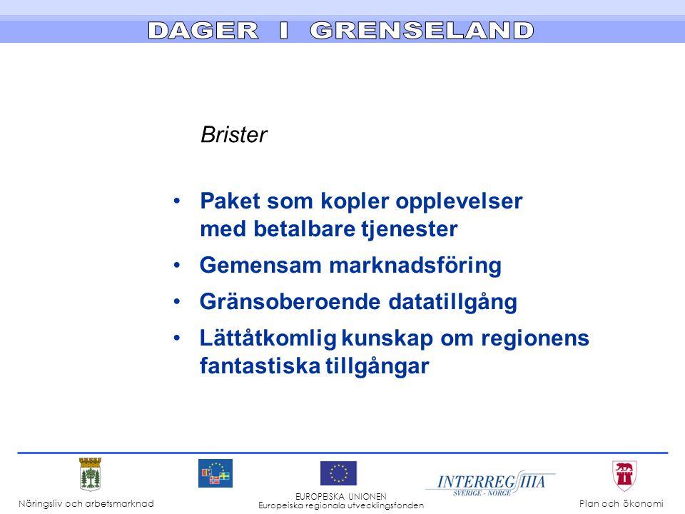 Brister •Paket som kopler opplevelser med betalbare tjenester • Gemensam marknadsföring • Gränsoberoende datatillgång • Lättåtkomlig kunskap om regionens fantastiska tillgångar Näringsliv och arbetsmarknad Plan och ökonomi EUROPEISKA UNIONEN Europeiska regionala utvecklingsfonden