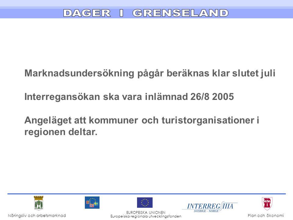 Marknadsundersökning pågår beräknas klar slutet juli Interregansökan ska vara inlämnad 26/8 2005 Angeläget att kommuner och turistorganisationer i regionen deltar.