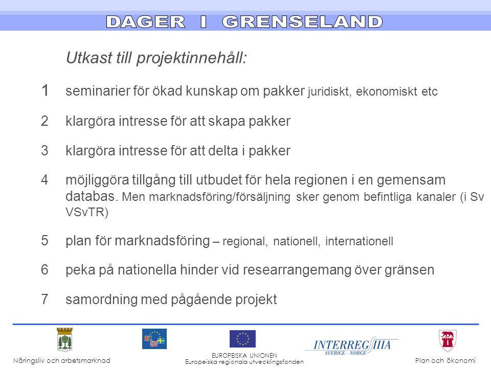 Uppskattad kostnad Sverige: Drygt 2 milj kr varavEU1000 personalins 300 kontant 700 Motsvarande kostnad i Norge Näringsliv och arbetsmarknad Plan och ökonomi EUROPEISKA UNIONEN Europeiska regionala utvecklingsfonden