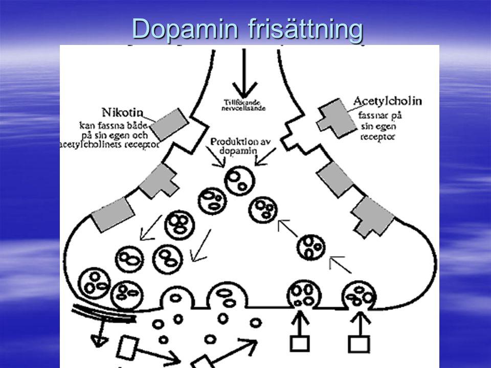 Dopamin frisättning