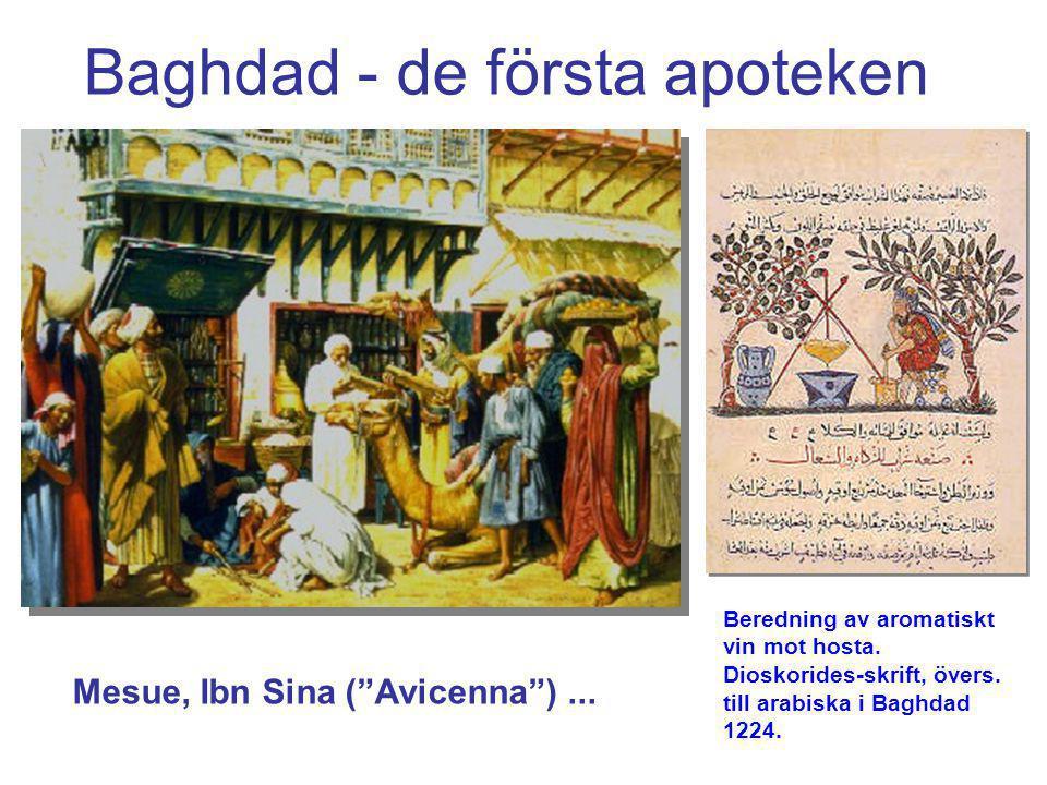 """Baghdad - de första apoteken Beredning av aromatiskt vin mot hosta. Dioskorides-skrift, övers. till arabiska i Baghdad 1224. Mesue, Ibn Sina (""""Avicenn"""
