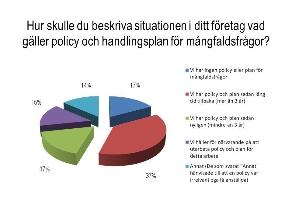 Hur skulle du beskriva situationen i ditt företag vad gäller policy och handlingsplan för mångfaldsfrågor?
