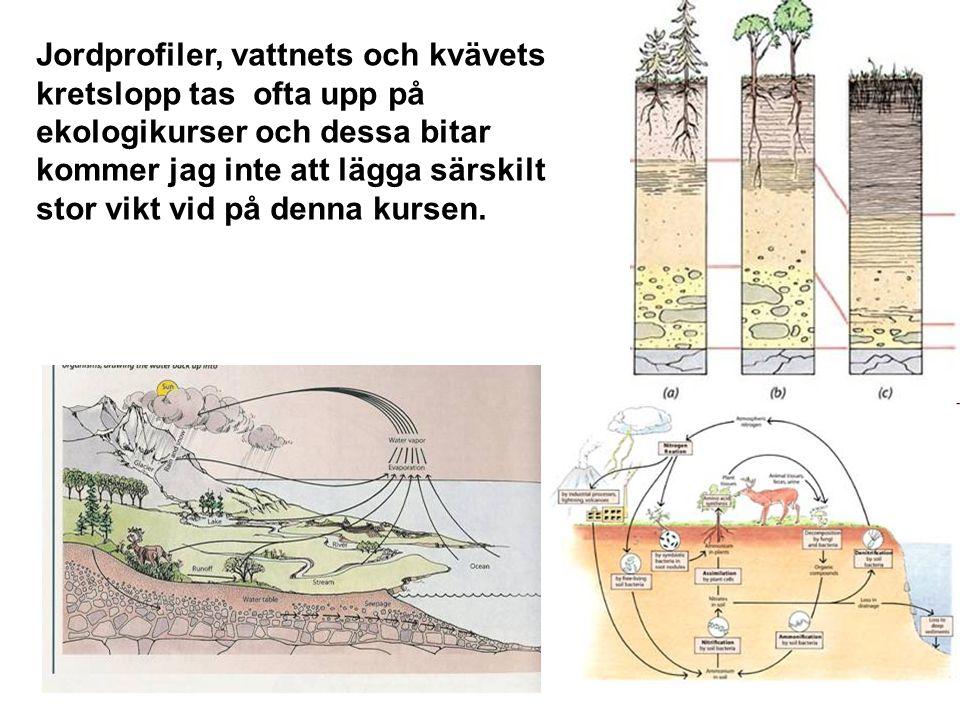 12 Jordprofiler, vattnets och kvävets kretslopp tas ofta upp på ekologikurser och dessa bitar kommer jag inte att lägga särskilt stor vikt vid på denn