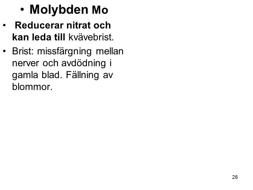 26 •M•Molybden Mo • R• Reducerar nitrat och kan leda till kvävebrist. •B•Brist: missfärgning mellan nerver och avdödning i gamla blad. Fällning av blo