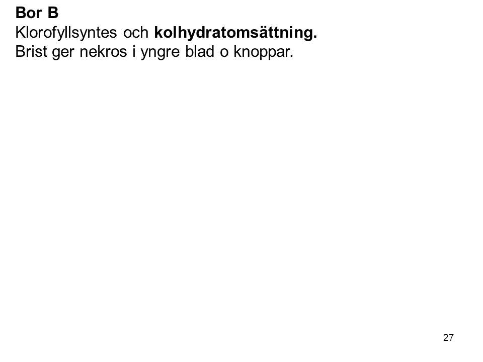 27 Bor B Klorofyllsyntes och kolhydratomsättning. Brist ger nekros i yngre blad o knoppar.