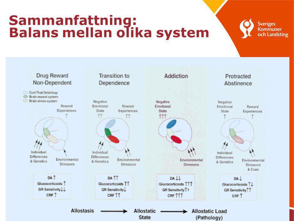 copyright Peter Valverius 2010 Sammanfattning: Balans mellan olika system