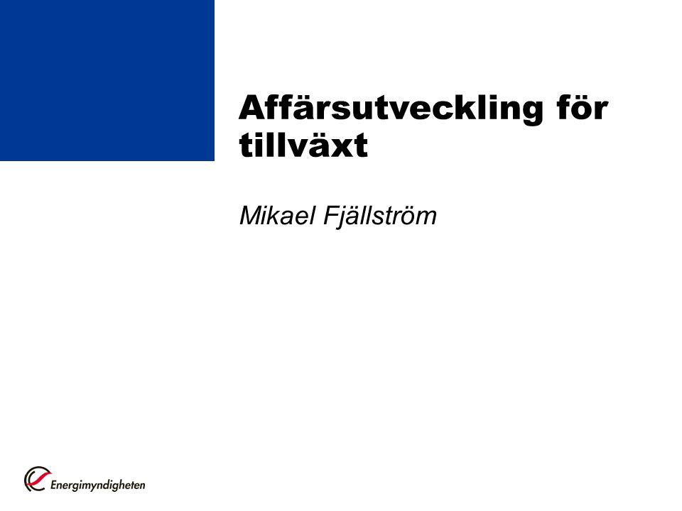 Mikael Fjällström Affärsutveckling för tillväxt