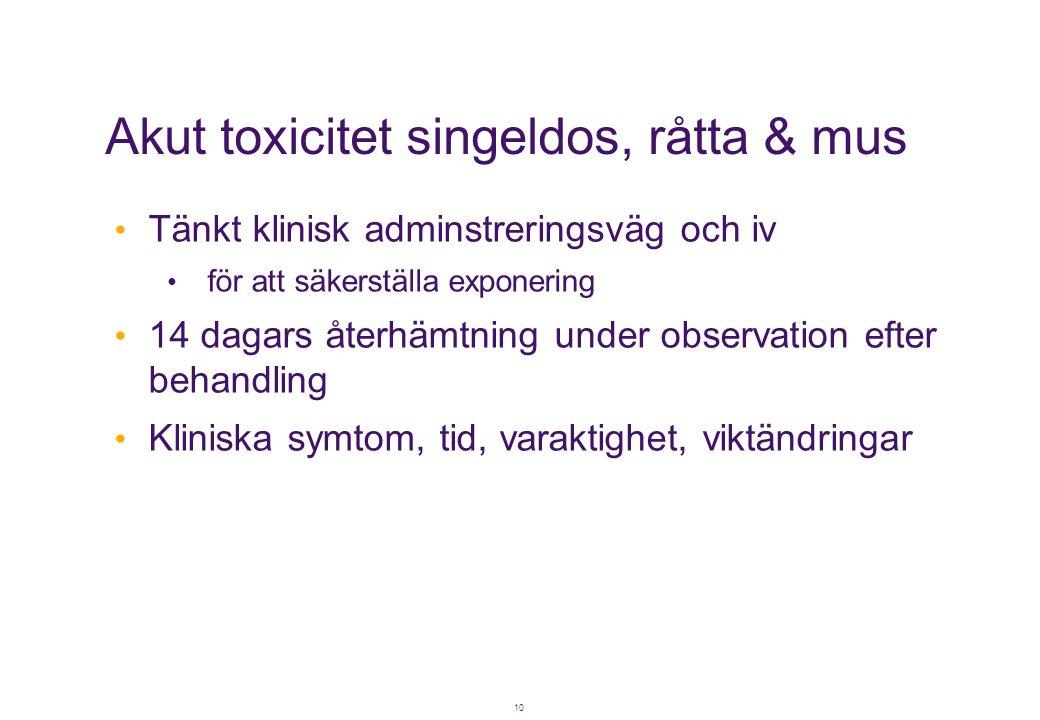 10 Akut toxicitet singeldos, råtta & mus • Tänkt klinisk adminstreringsväg och iv • för att säkerställa exponering • 14 dagars återhämtning under obse