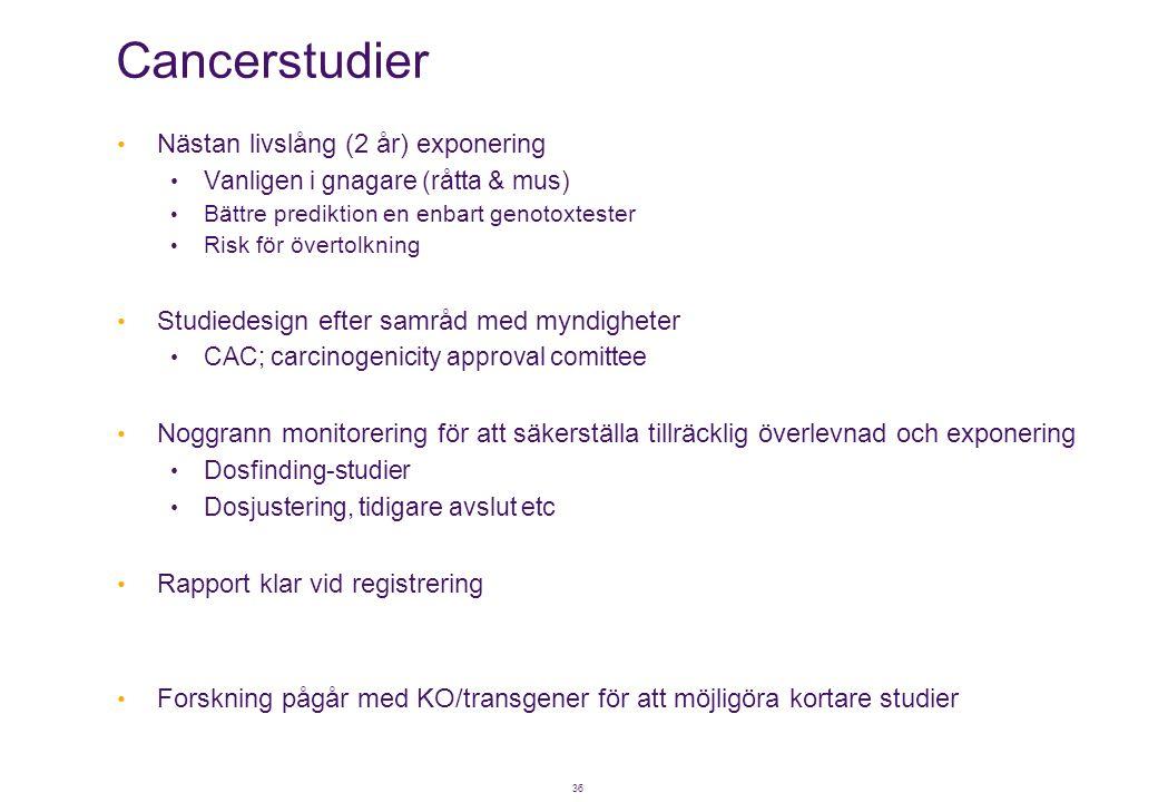 36 Cancerstudier • Nästan livslång (2 år) exponering • Vanligen i gnagare (råtta & mus) • Bättre prediktion en enbart genotoxtester • Risk för övertol