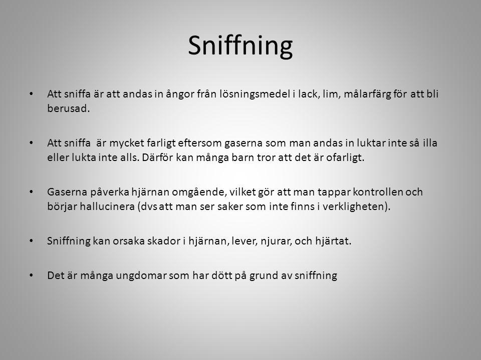 Sniffning • Att sniffa är att andas in ångor från lösningsmedel i lack, lim, målarfärg för att bli berusad. • Att sniffa är mycket farligt eftersom ga