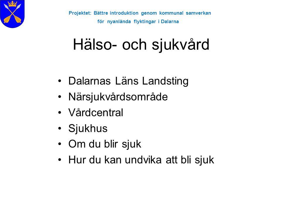 Projektet: Bättre introduktion genom kommunal samverkan för nyanlända flyktingar i Dalarna Hälso- och sjukvård