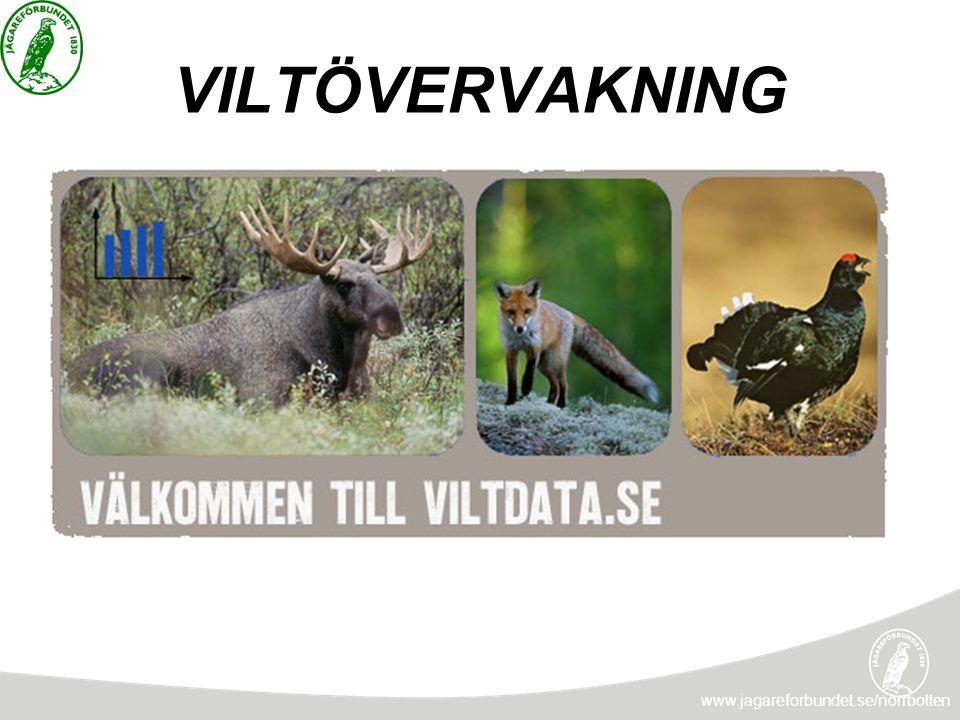 VILTÖVERVAKNING www.jagareforbundet.se/norrbotten