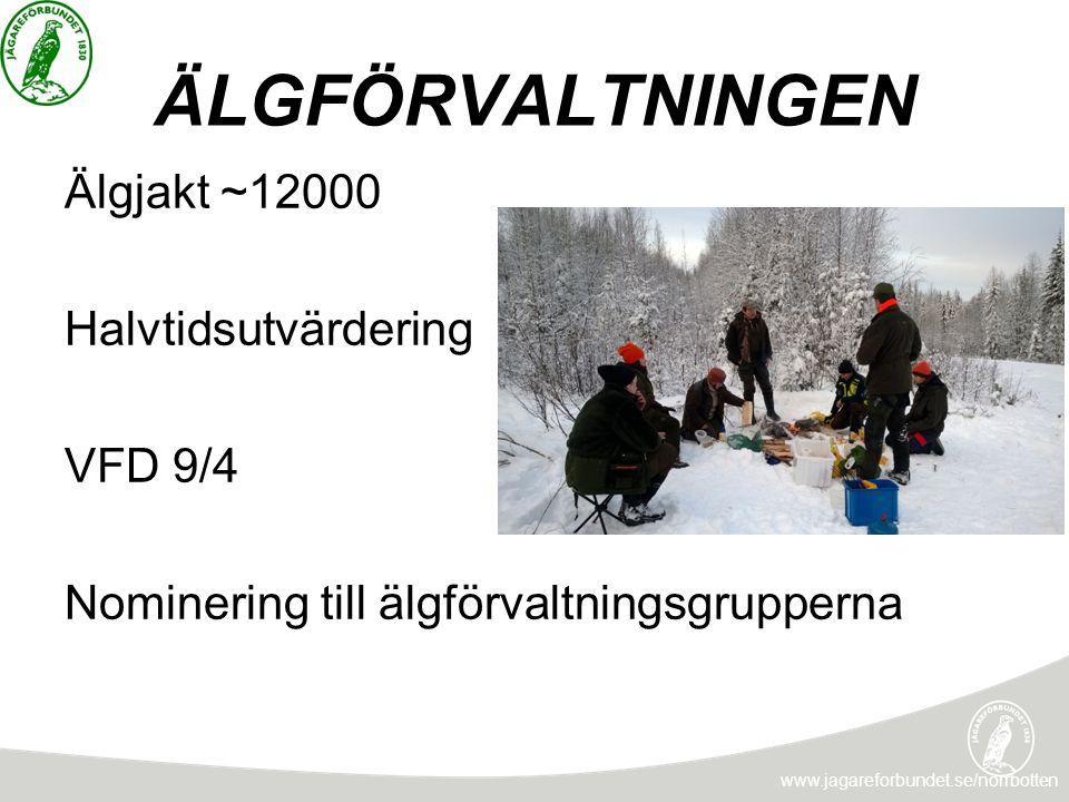 ÄLGFÖRVALTNINGEN www.jagareforbundet.se/norrbotten Älgjakt ~12000 Halvtidsutvärdering VFD 9/4 Nominering till älgförvaltningsgrupperna