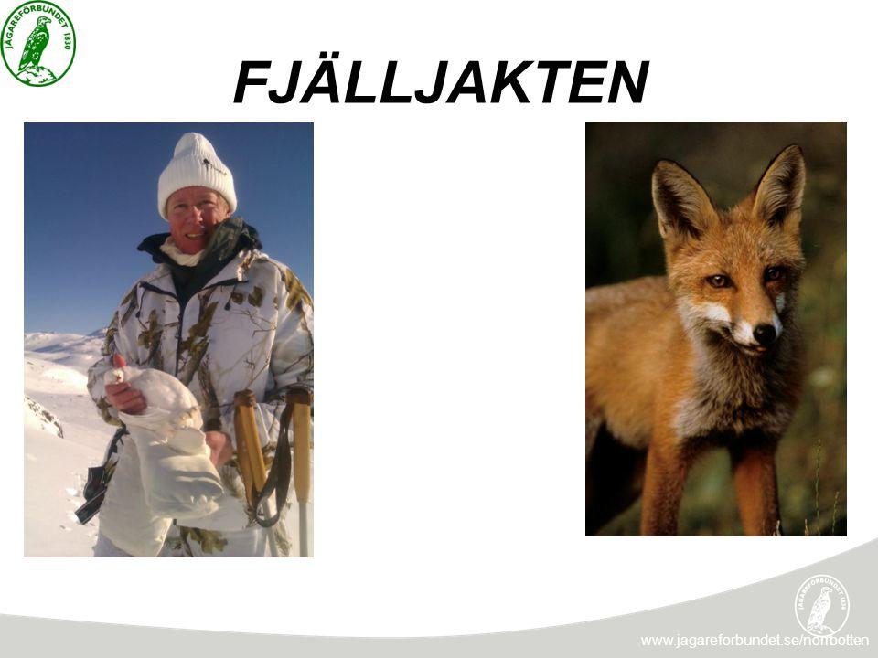 NATIONALPARKER www.jagareforbundet.se/norrbotten Översyn av regelverket i nationalparker och naturreservat i syfte att möjliggöra naturturism