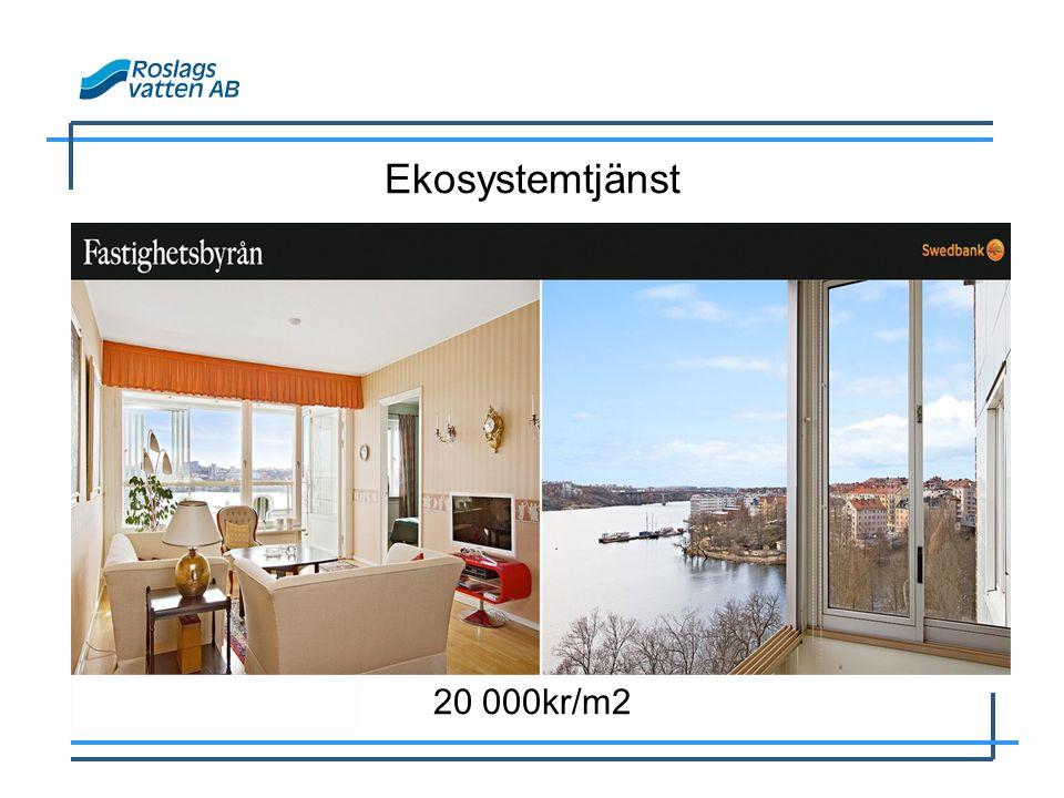 Ekosystemtjänst 20 000kr/m2