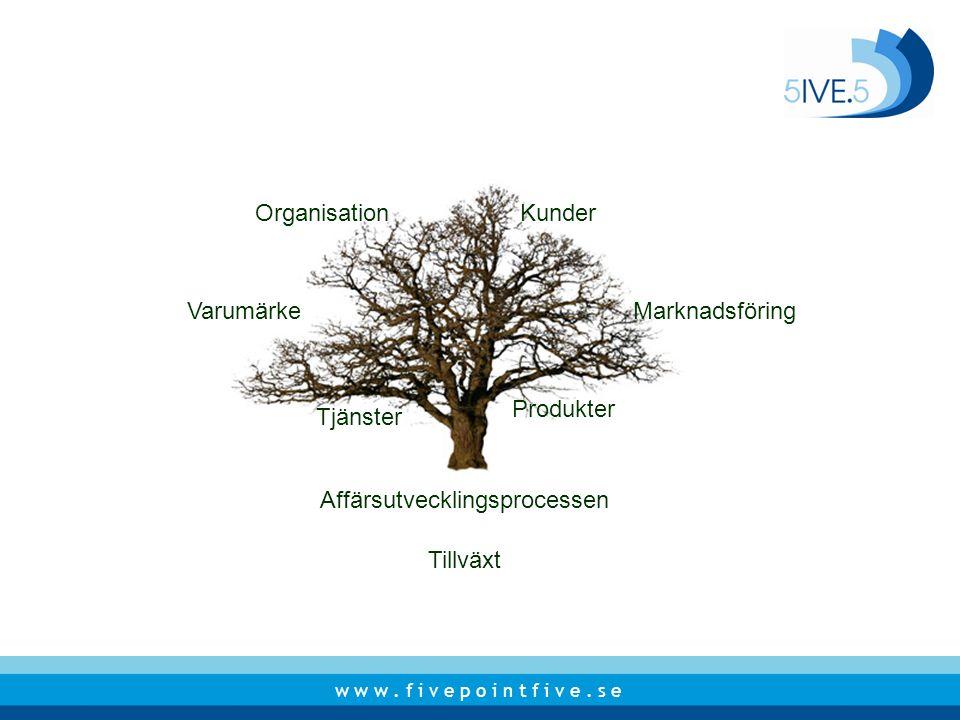 w w w. f i v e p o i n t f i v e. s e Affärsutvecklingsprocessen Produkter Tjänster MarknadsföringVarumärke KunderOrganisation Tillväxt
