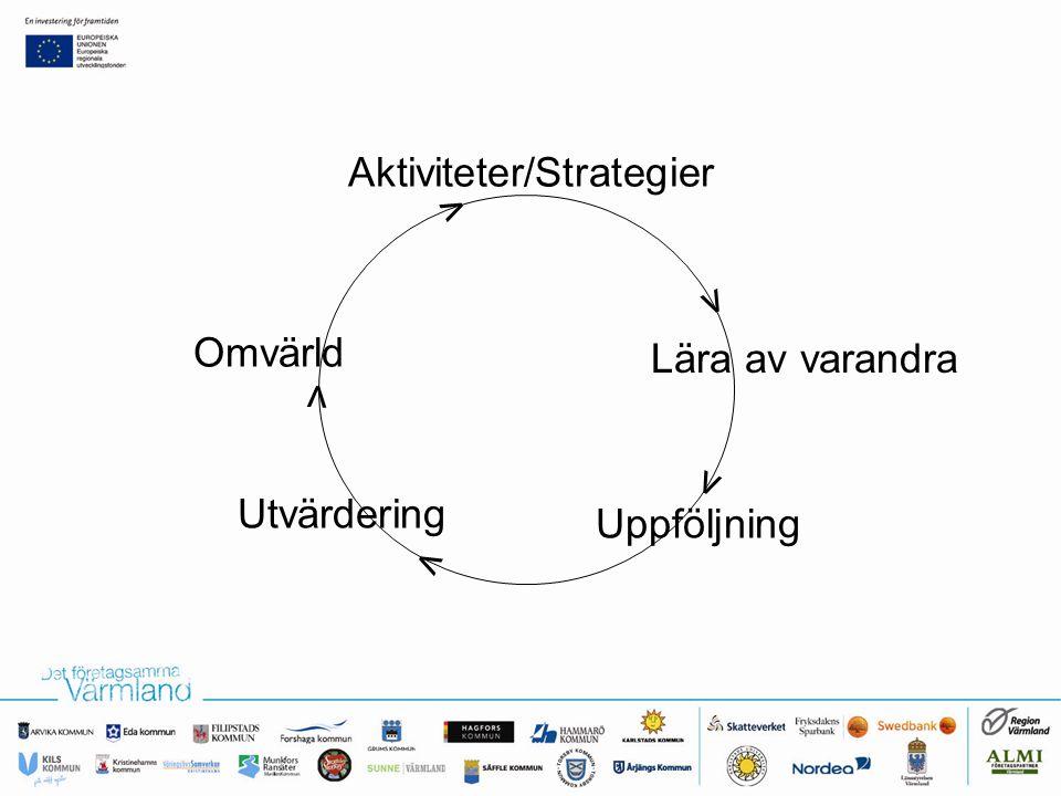 Aktiviteter/Strategier Lära av varandra Uppföljning Utvärdering Omvärld v v v v v