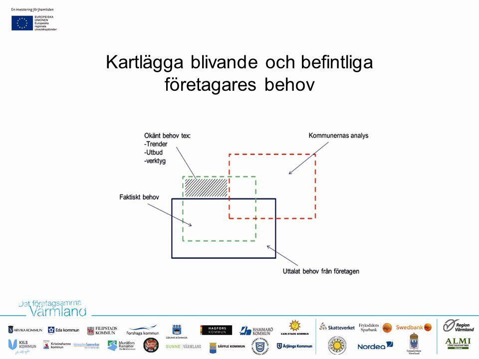 Kartläggning av stödsystemets erbjudanden Matcha behov och erbjudanden Skapa piloter/aktiviteter