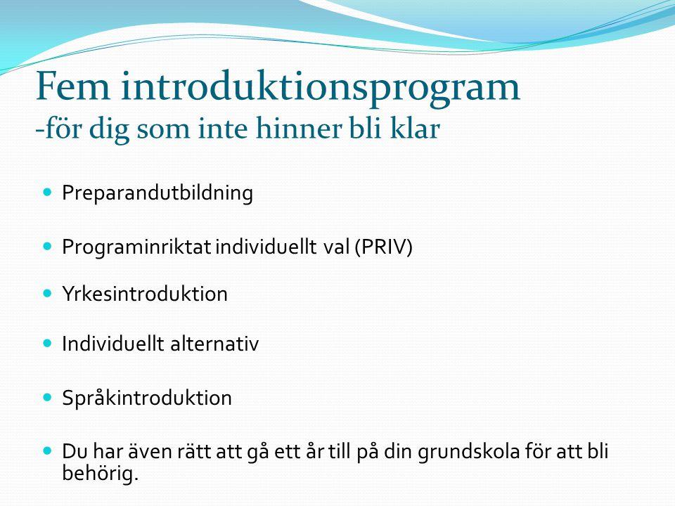 Fem introduktionsprogram -för dig som inte hinner bli klar  Preparandutbildning  Programinriktat individuellt val (PRIV)  Yrkesintroduktion  Indiv