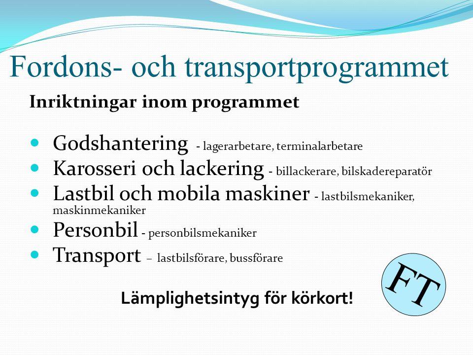 Fordons- och transportprogrammet Inriktningar inom programmet  Godshantering - lagerarbetare, terminalarbetare  Karosseri och lackering - billackera
