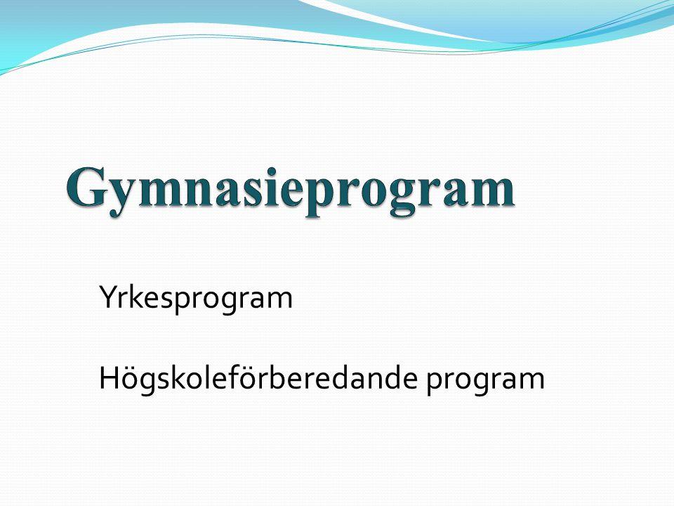 Yrkesprogram Högskoleförberedande program