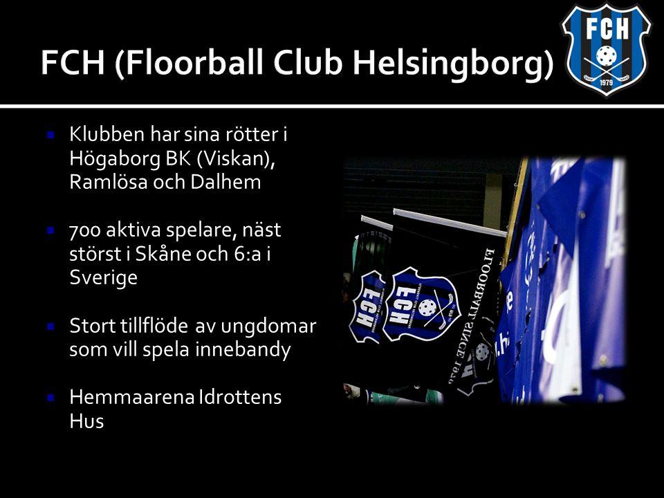  Klubben har sina rötter i Högaborg BK (Viskan), Ramlösa och Dalhem  700 aktiva spelare, näst störst i Skåne och 6:a i Sverige  Stort tillflöde av ungdomar som vill spela innebandy  Hemmaarena Idrottens Hus