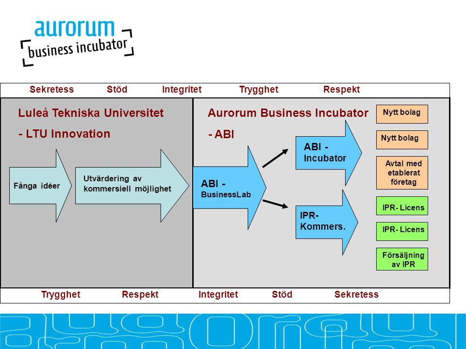 Avtal med etablerat företag Fånga idéer ABI - BusinessLab ABI - Incubator Utvärdering av kommersiell möjlighet IPR- Kommers.