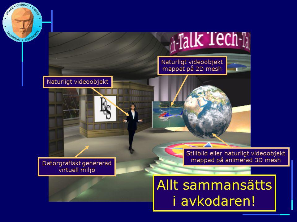 Datorgrafiskt genererad virtuell miljö Naturligt videoobjektNaturligt videoobjekt mappat på 2D mesh Stillbild eller naturligt videoobjekt mappad på an
