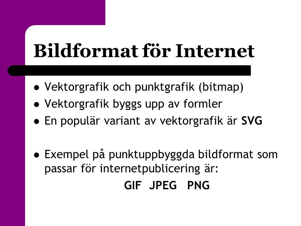 Bildformat för Internet  Vektorgrafik och punktgrafik (bitmap)  Vektorgrafik byggs upp av formler  En populär variant av vektorgrafik är SVG  Exem