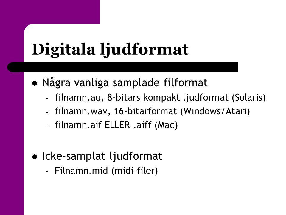 Digitala ljudformat  Några vanliga samplade filformat – filnamn.au, 8-bitars kompakt ljudformat (Solaris) – filnamn.wav, 16-bitarformat (Windows/Atar