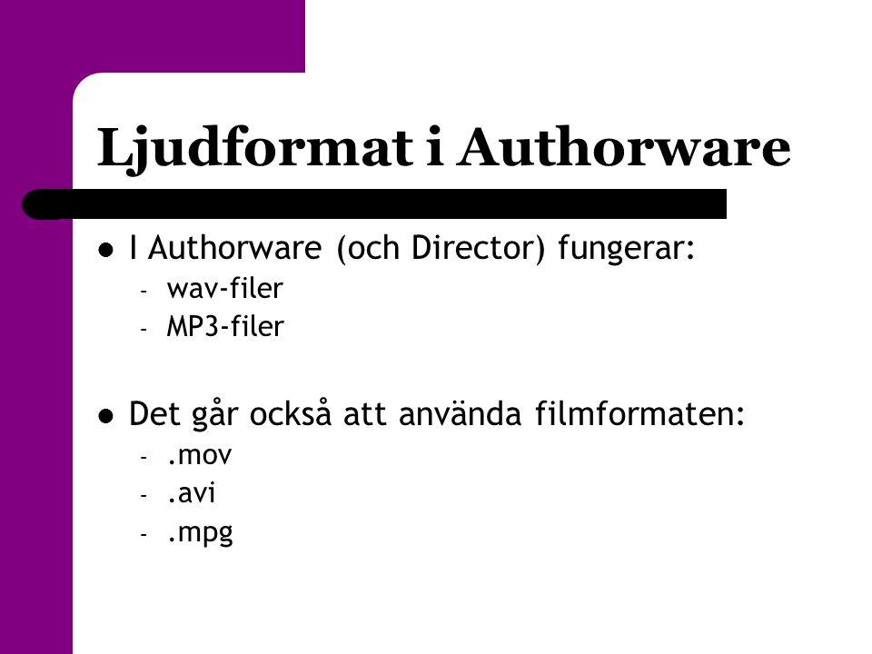 Ljudformat i Authorware  I Authorware (och Director) fungerar: – wav-filer – MP3-filer  Det går också att använda filmformaten: –.mov –.avi –.mpg