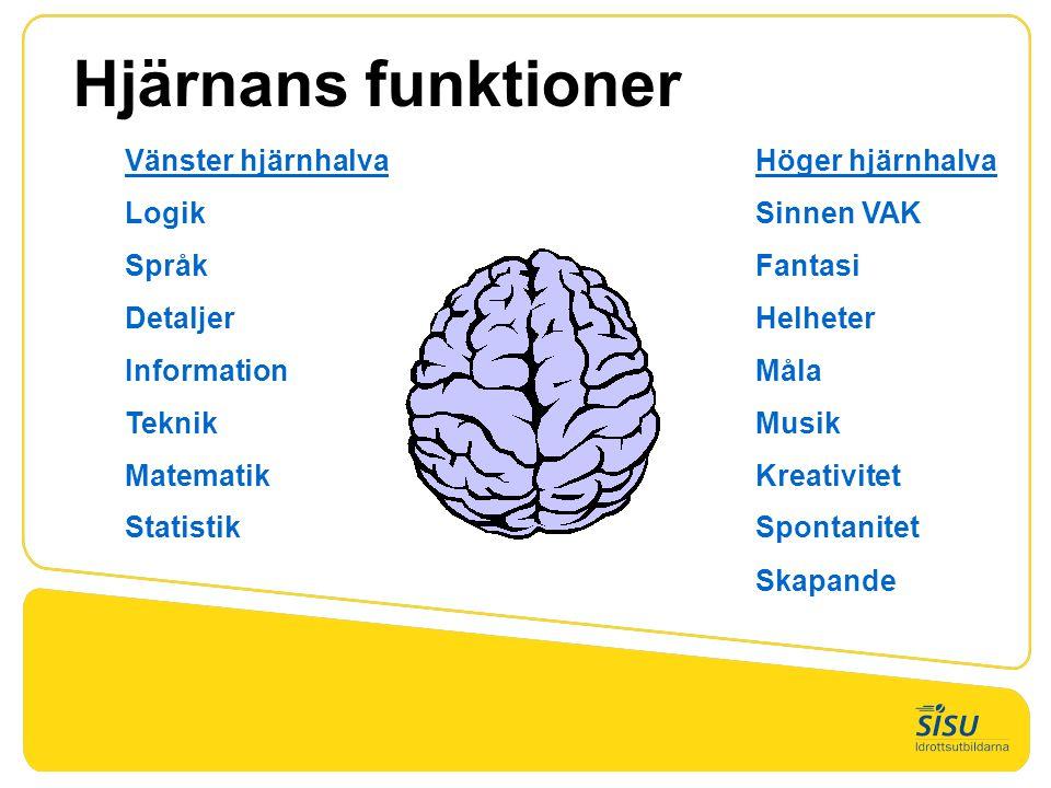 Vänster hjärnhalva Höger hjärnhalva LogikSinnen VAK SpråkFantasi DetaljerHelheter InformationMåla TeknikMusik MatematikKreativitet StatistikSpontanitet Skapande Hjärnans funktioner