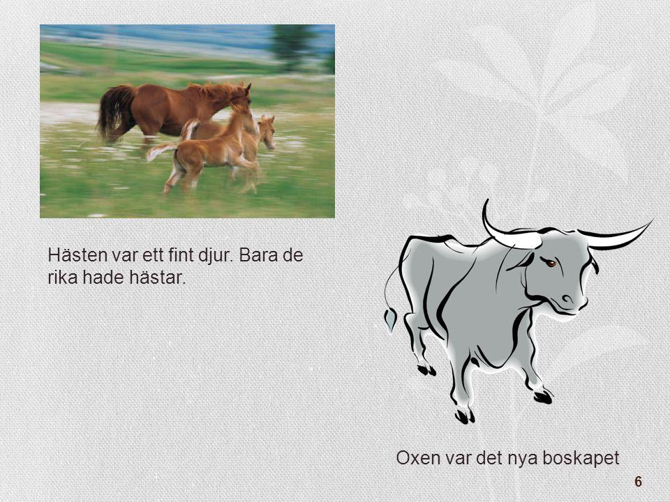 6 Hästen var ett fint djur. Bara de rika hade hästar. Oxen var det nya boskapet