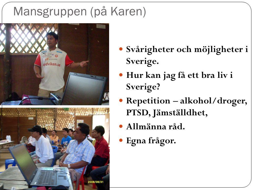 Mansgruppen (på Karen)  Svårigheter och möjligheter i Sverige.
