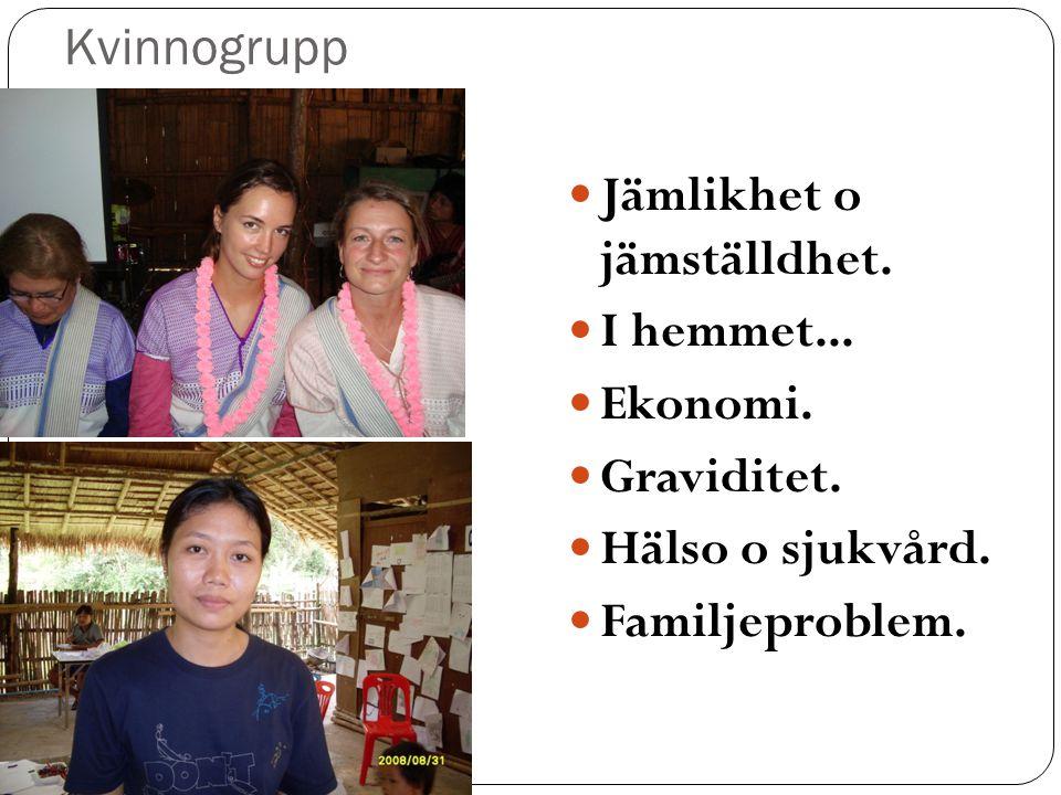 Kvinnogrupp  Jämlikhet o jämställdhet. I hemmet...