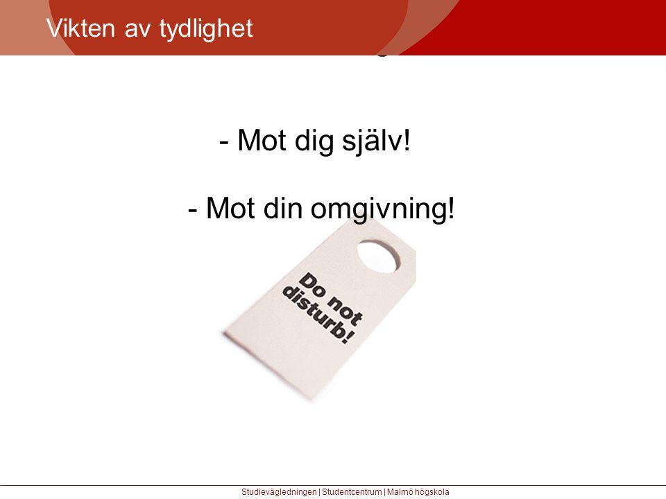 Större mångfald Vikten av tydlighet Studievägledningen | Studentcentrum | Malmö högskola - Mot dig själv.