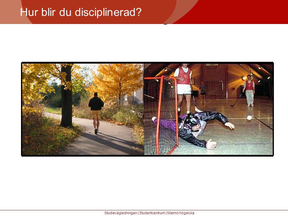 Större mångfald Hur blir du disciplinerad? Studievägledningen | Studentcentrum | Malmö högskola