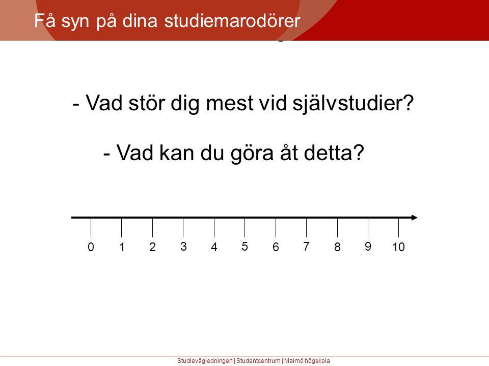 Större mångfald Få syn på dina studiemarodörer Studievägledningen | Studentcentrum | Malmö högskola - Vad stör dig mest vid självstudier.