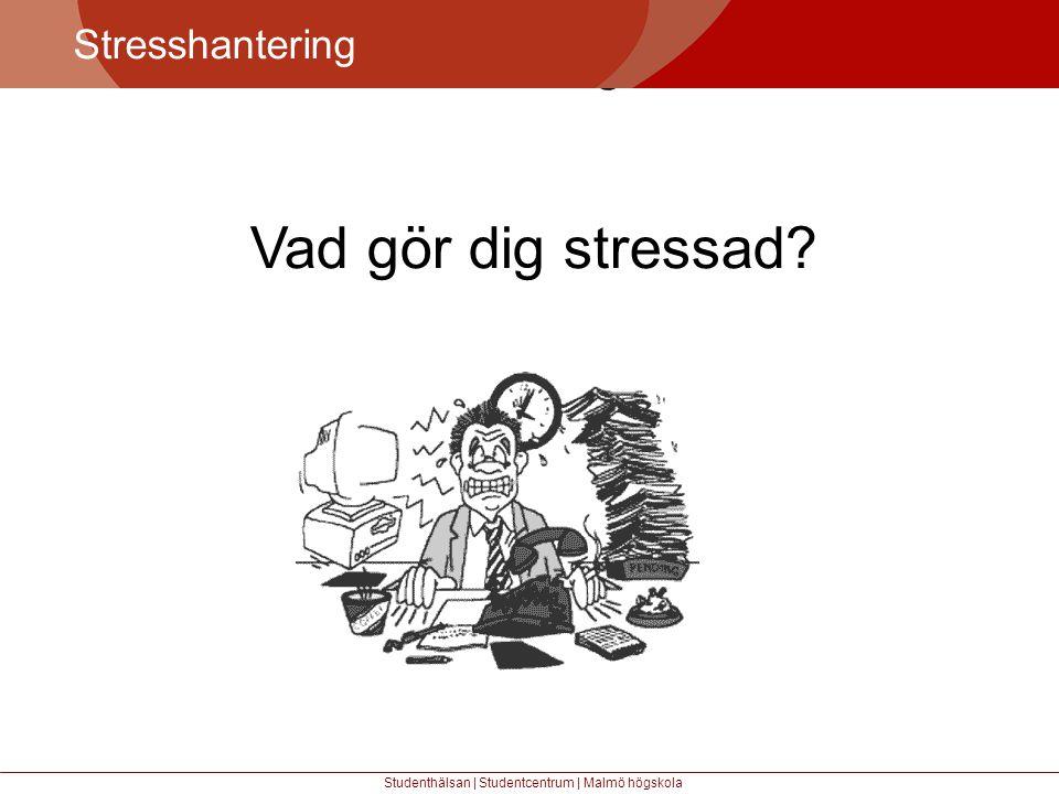 Större mångfald Stresshantering Studenthälsan | Studentcentrum | Malmö högskola Vad gör dig stressad?