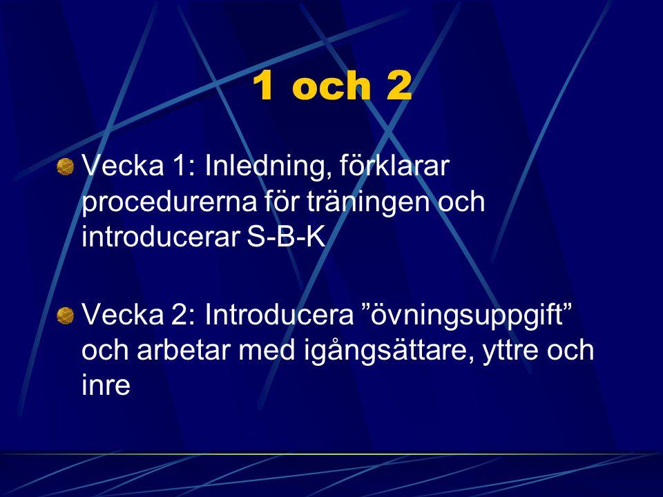 """1 och 2 Vecka 1: Inledning, förklarar procedurerna för träningen och introducerar S-B-K Vecka 2: Introducera """"övningsuppgift"""" och arbetar med igångsät"""