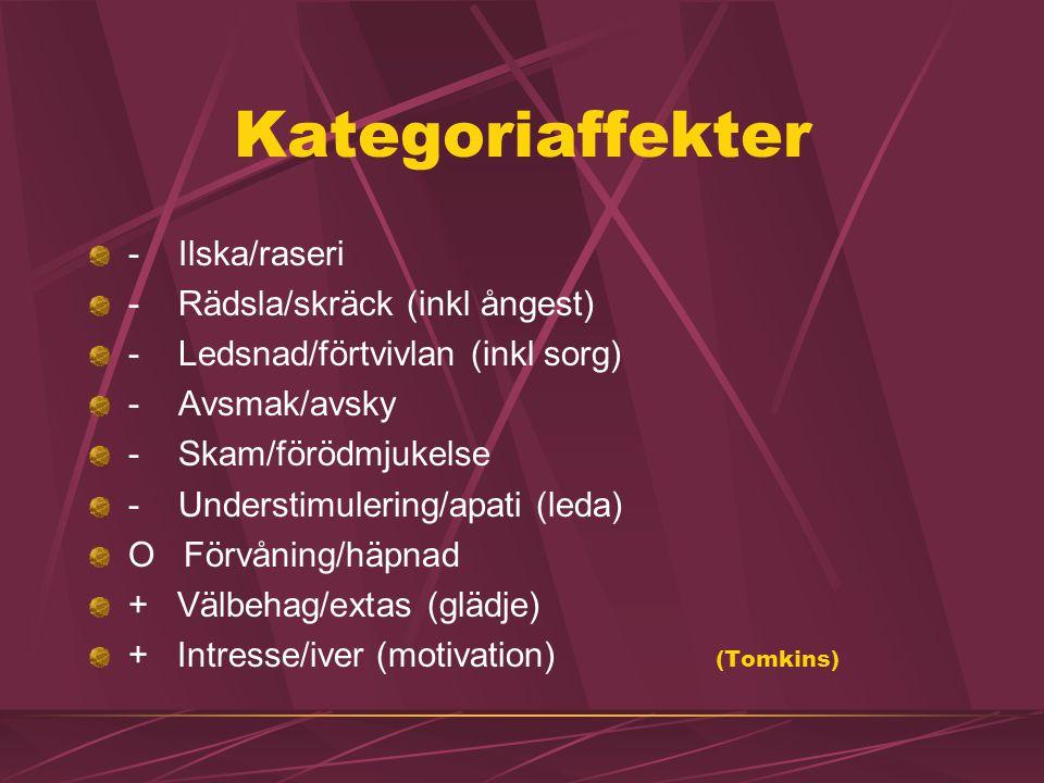 Kategoriaffekter - Ilska/raseri - Rädsla/skräck (inkl ångest) - Ledsnad/förtvivlan (inkl sorg) - Avsmak/avsky - Skam/förödmjukelse - Understimulering/