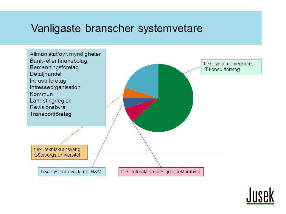 Vanligaste branscher systemvetare t.ex. interaktionsdesigner, reklambyrå t.ex. systemutvecklare, IT-konsultföretag t.ex. systemutvecklare, H&M t.ex. t