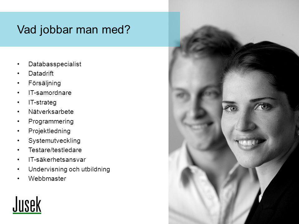 •Databasspecialist •Datadrift •Försäljning •IT-samordnare •IT-strateg •Nätverksarbete •Programmering •Projektledning •Systemutveckling •Testare/testle