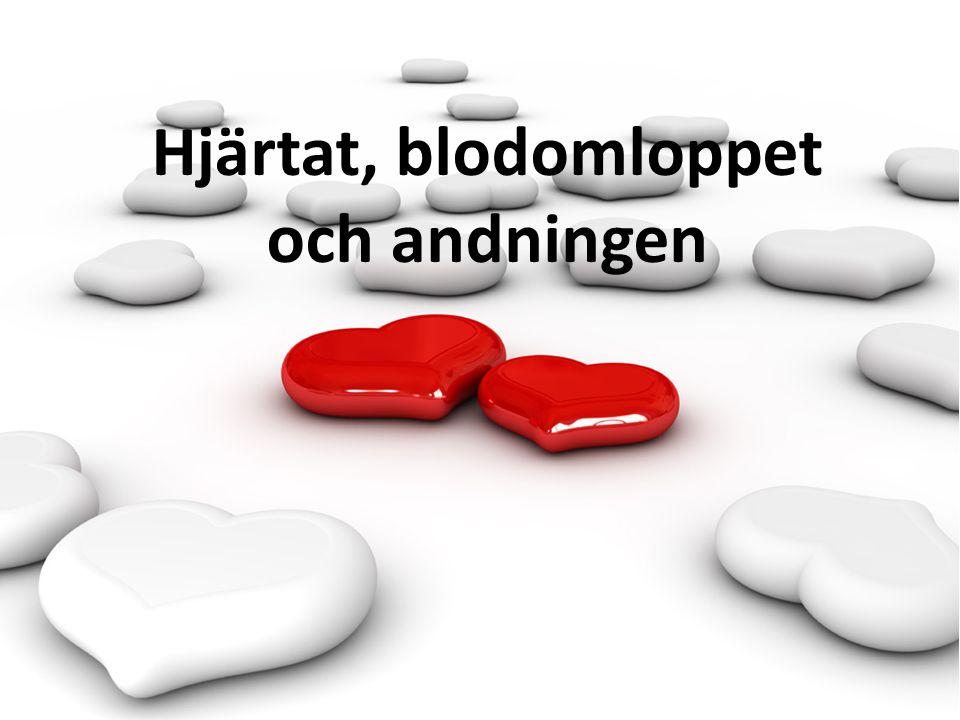Blodets transport Artärer : Hjärtat pumpar fram blodet.