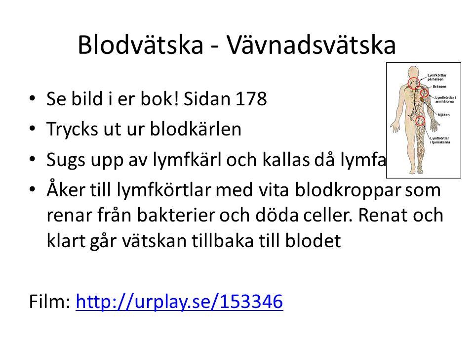 Blodvätska - Vävnadsvätska • Se bild i er bok! Sidan 178 • Trycks ut ur blodkärlen • Sugs upp av lymfkärl och kallas då lymfa • Åker till lymfkörtlar