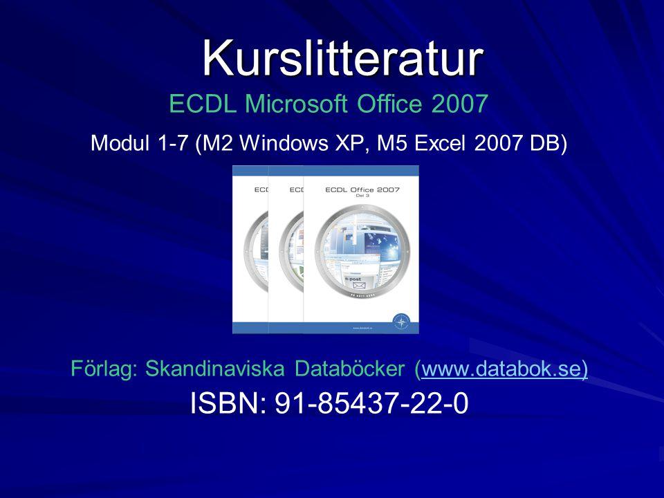 • Försvenskning av software.• Bör egentligen heta programvara på svenska.