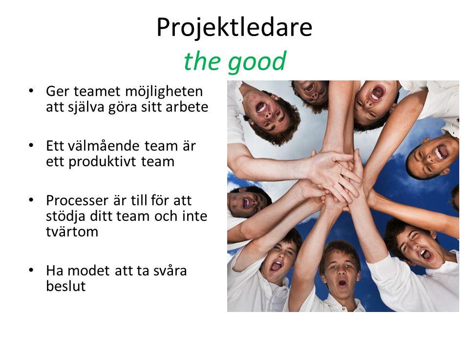 Projektledare the good • Ger teamet möjligheten att själva göra sitt arbete • Ett välmående team är ett produktivt team • Processer är till för att stödja ditt team och inte tvärtom • Ha modet att ta svåra beslut